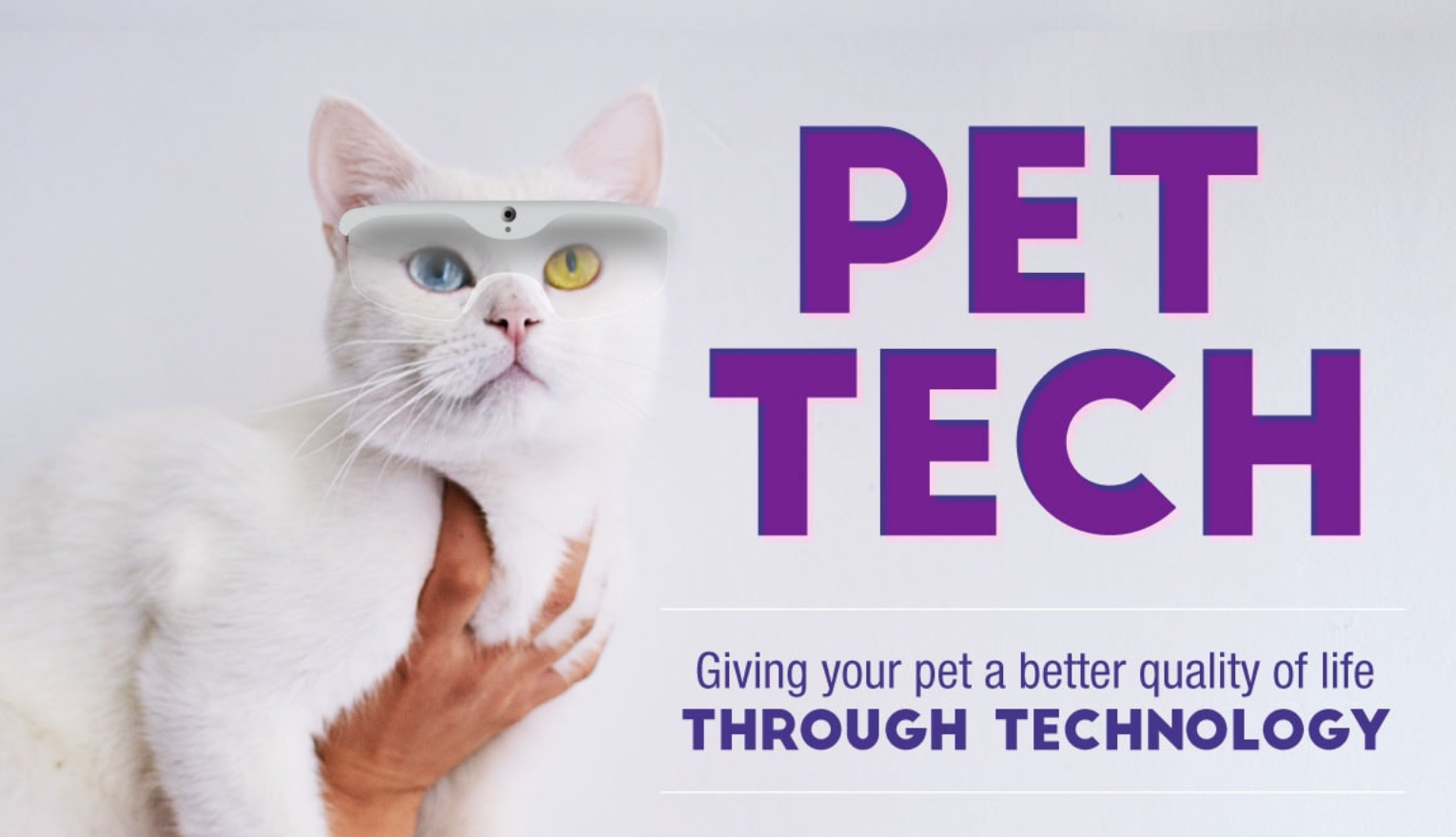 /how-tech-is-changing-the-game-for-the-pet-industry-43240b066de3 feature image