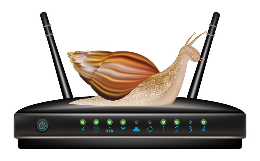 /dont-let-your-internet-slow-to-a-snail-s-pace-join-the-battleforthenet-63e5e1537be6 feature image