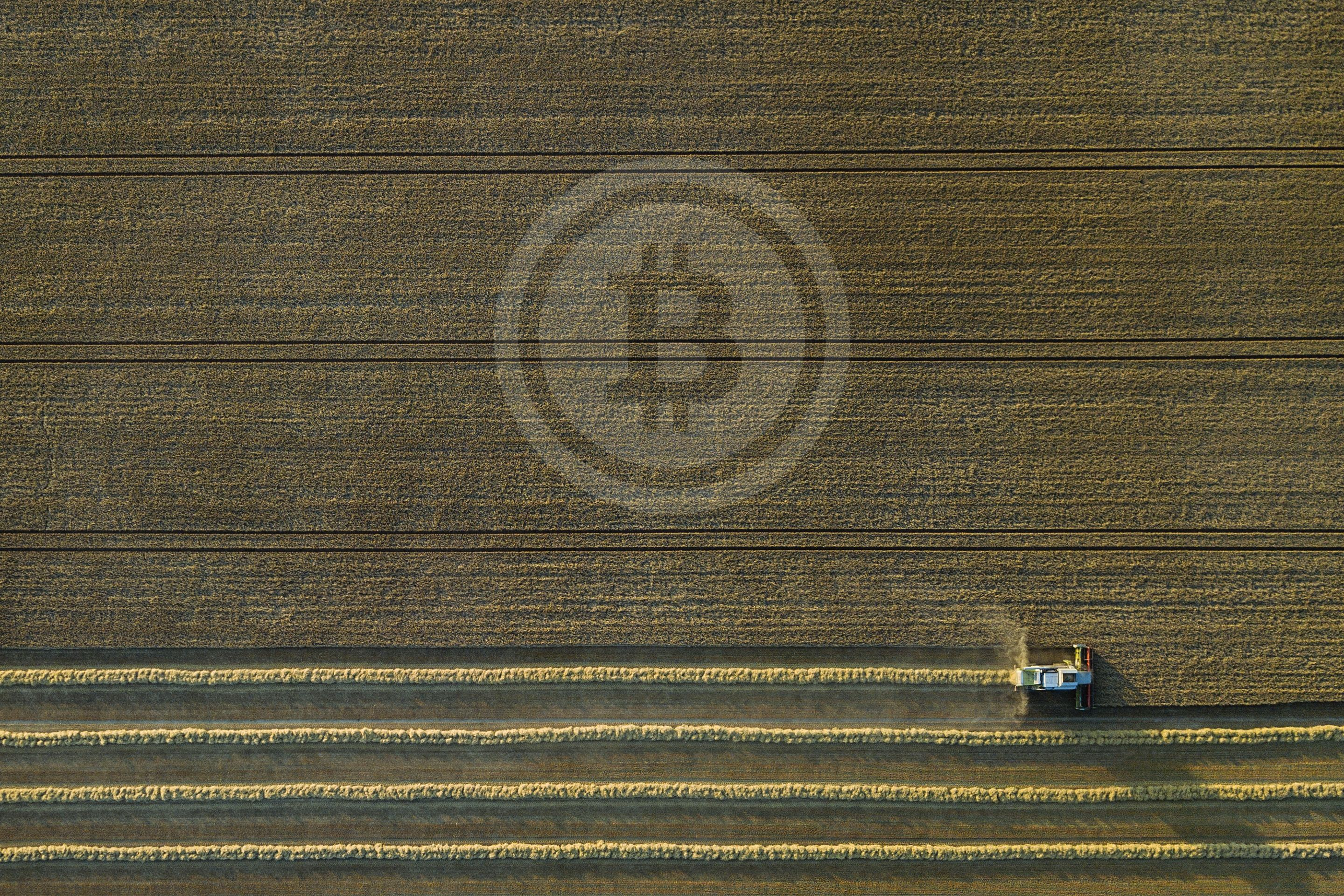 /what-is-yield-farming-l6x34t9 feature image