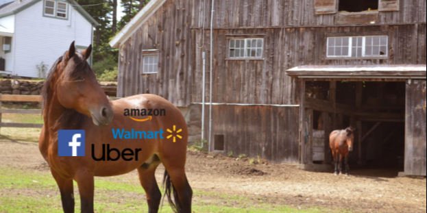 /from-centralized-to-decentralized-that-horse-is-out-of-the-barn-7mlk3w7b feature image