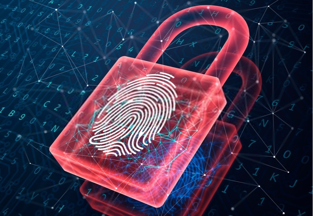 /biometric-authentication-working-methods-and-use-cases-3z2a377p feature image
