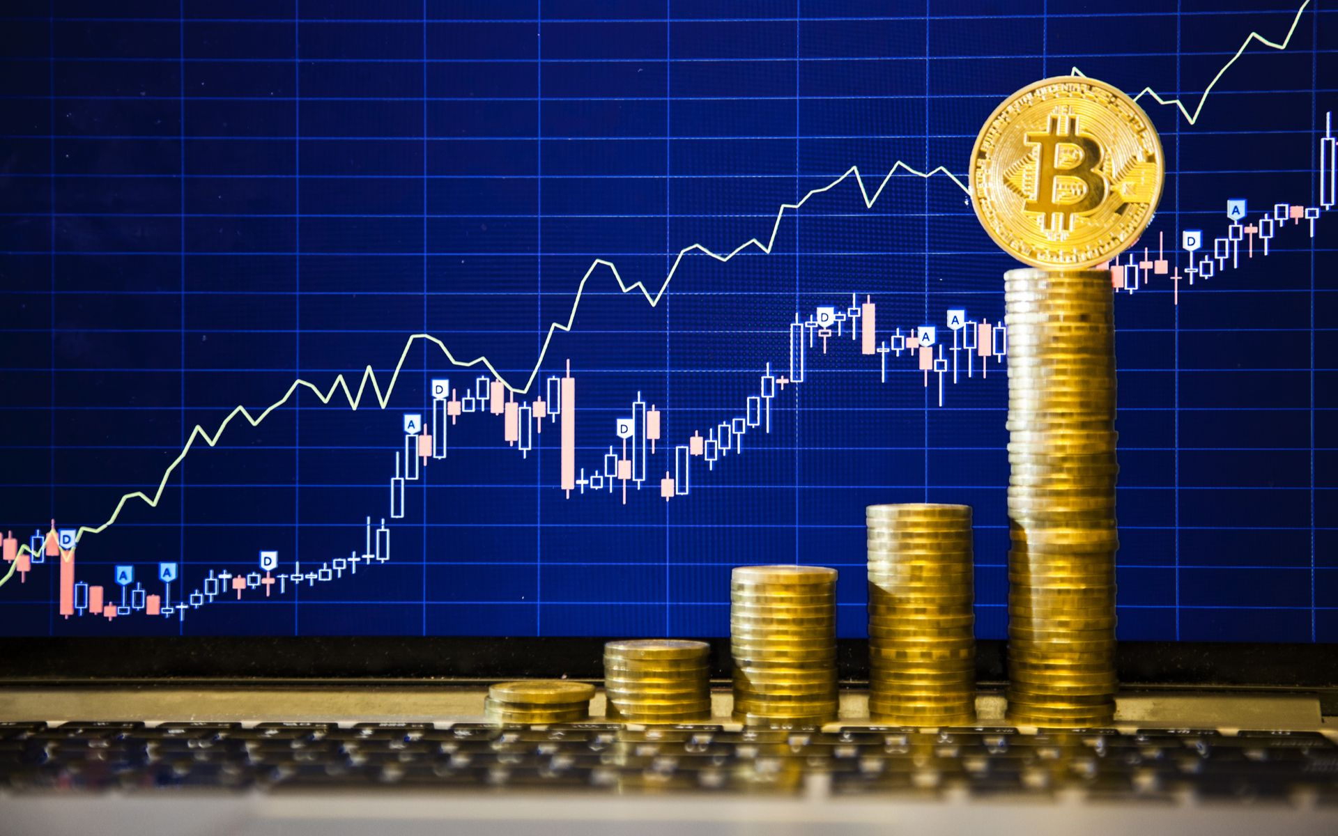 /is-bitcoin-really-the-best-alternative-investment-asset-for-your-portfolio-cc2a32yf feature image