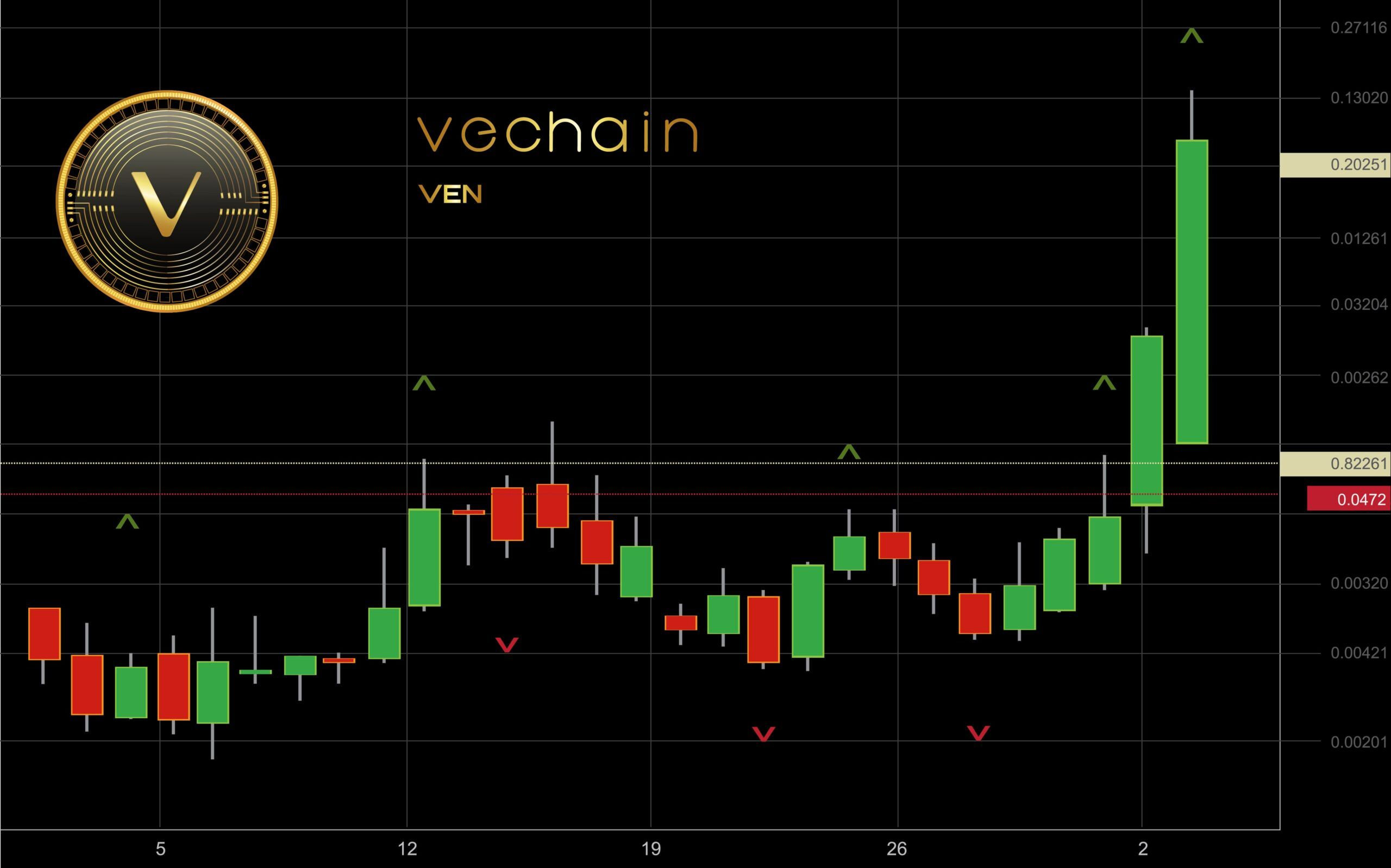 /everything-you-need-to-know-about-vechain-hd3334e7 feature image