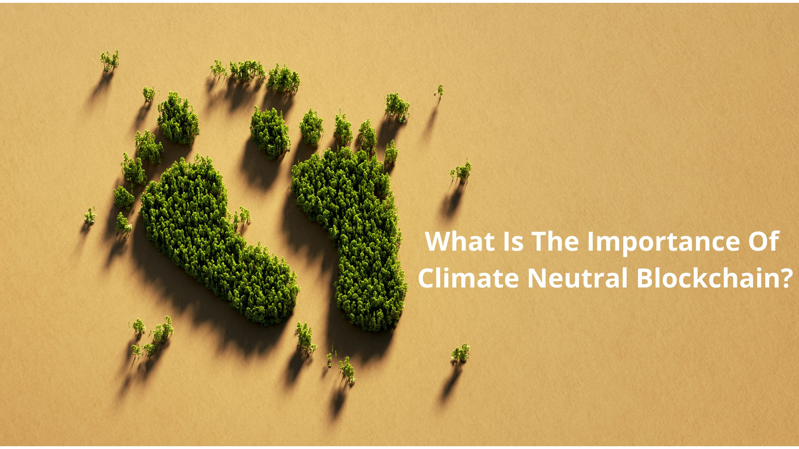 /the-undeniable-importance-of-climate-neutral-blockchains-7l1435kt feature image
