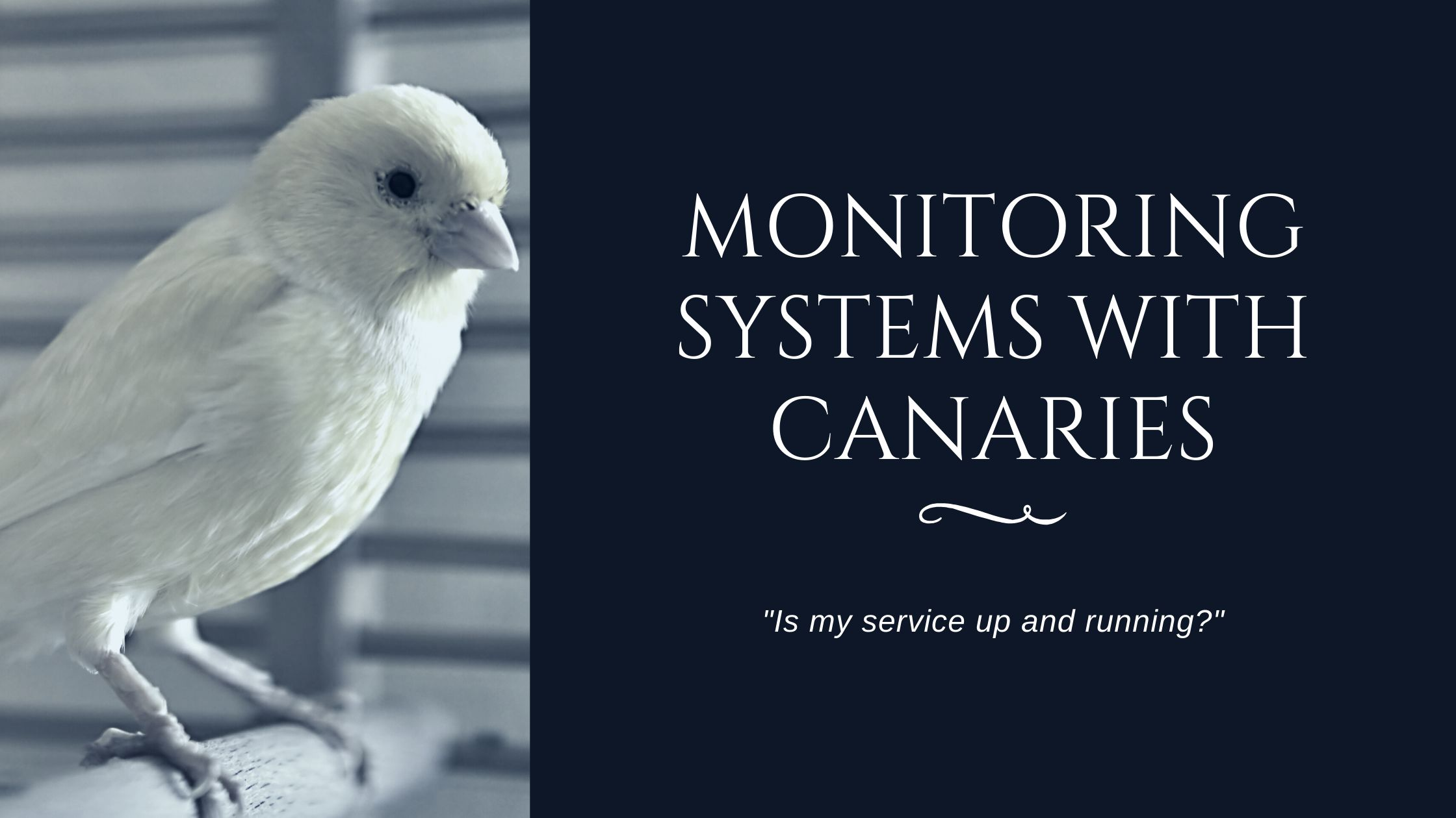 /canaries-to-the-rescue-catching-service-issues-before-the-end-user-38em359h feature image