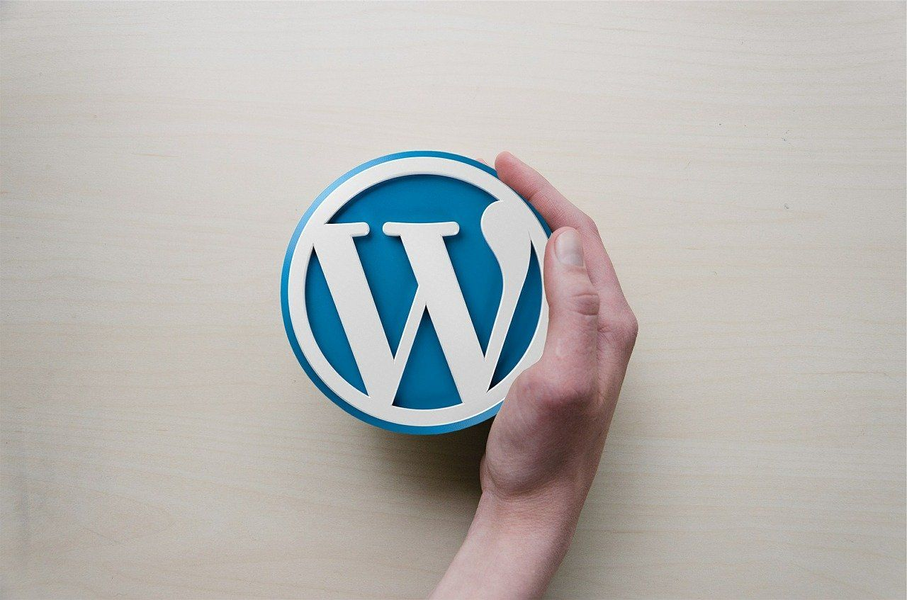 /how-to-export-your-data-from-wordpress-io1p33u7 feature image