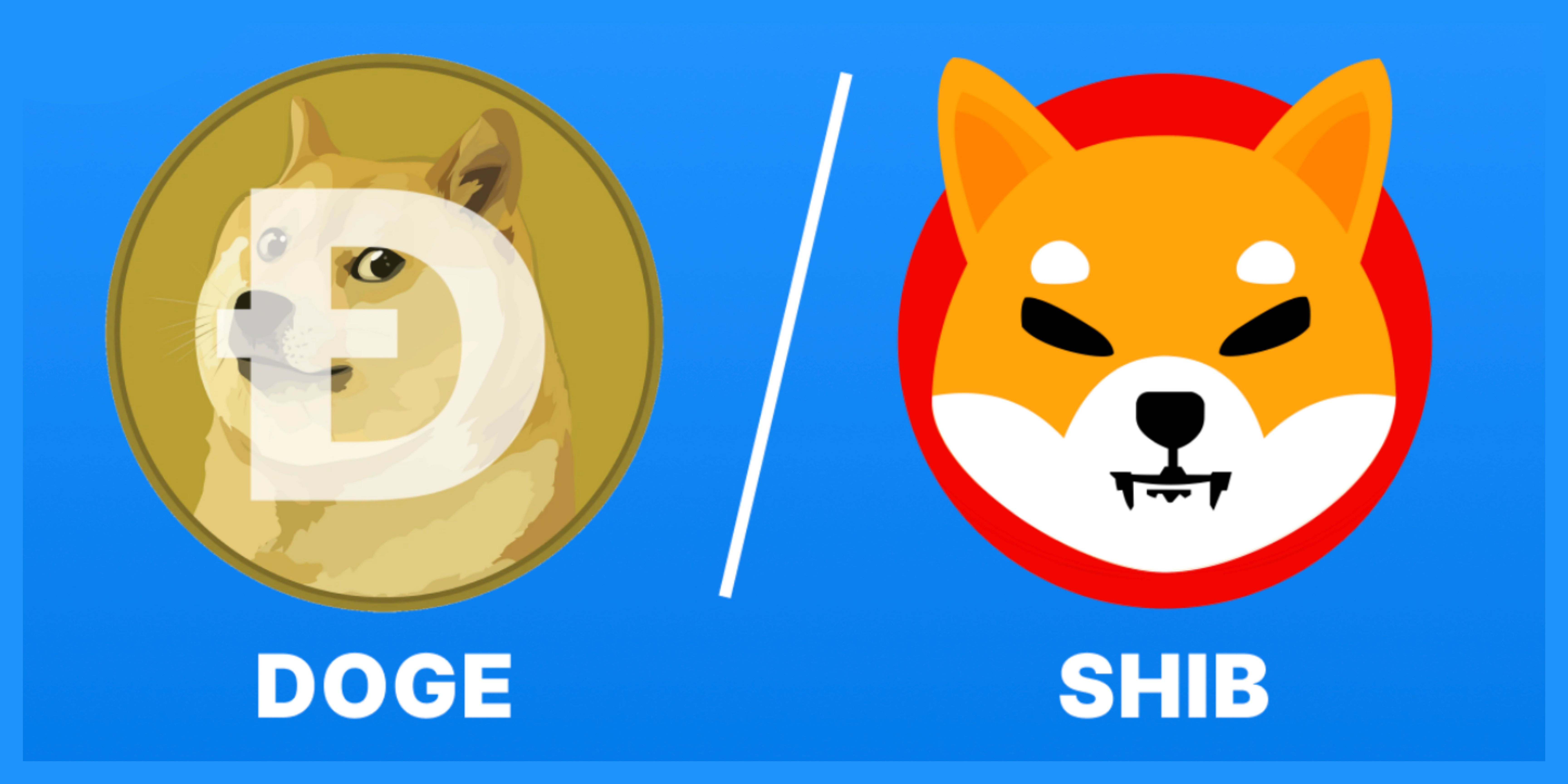 /whos-the-top-crypto-dog-shiba-inu-vs-dogecoin-xq2k37rd feature image