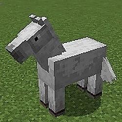Little White Horse Hacker Noon profile picture