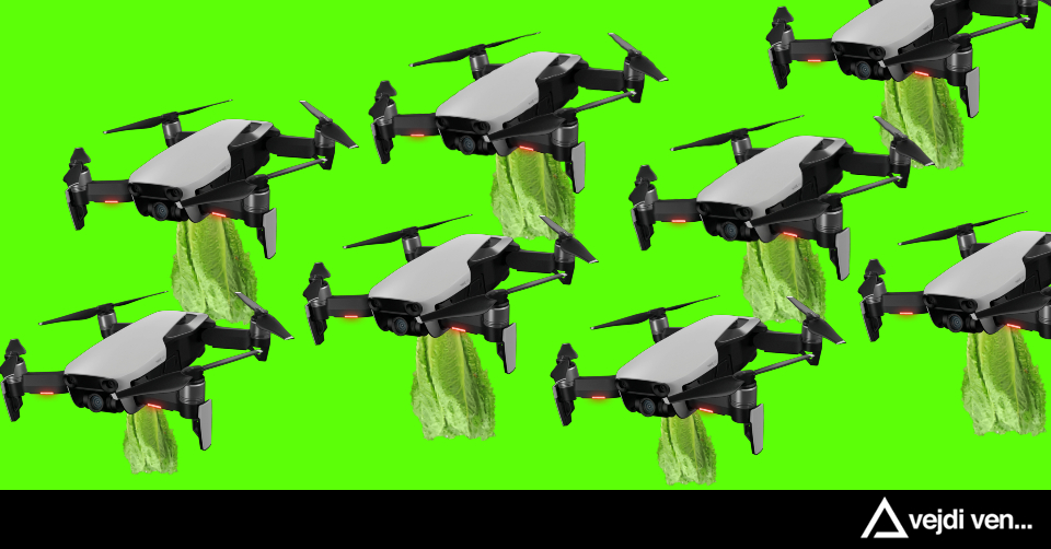 /delivering-hydroponic-salad-via-drones-and-being-paid-in-bitcoin-an-interview-84kf32kt feature image