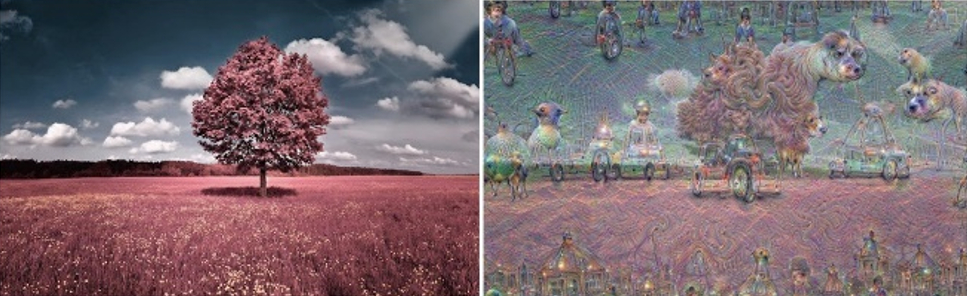 /what-neural-networks-teach-us-about-schizophrenia-ci3203zhx feature image