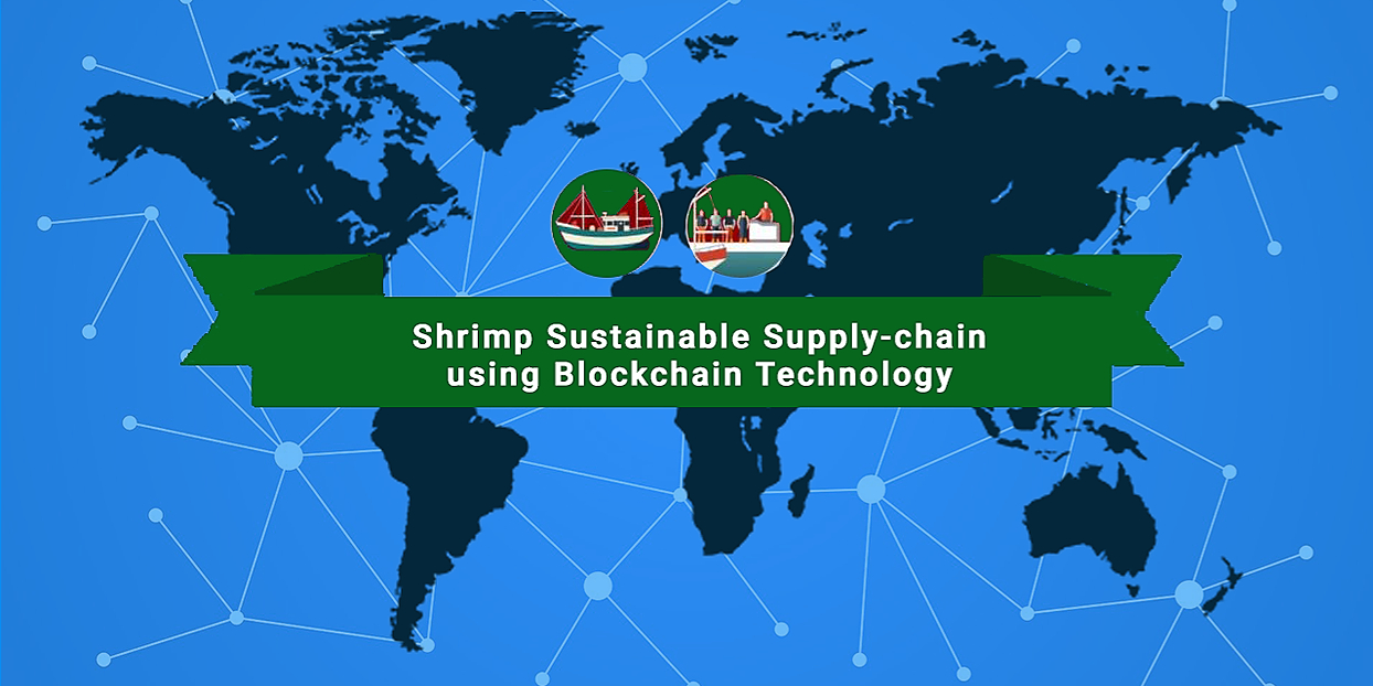 /how-to-solve-shrimp-supply-chain-obstacles-by-adopting-blockchain-traceability-solution-mq1ly3u0q feature image