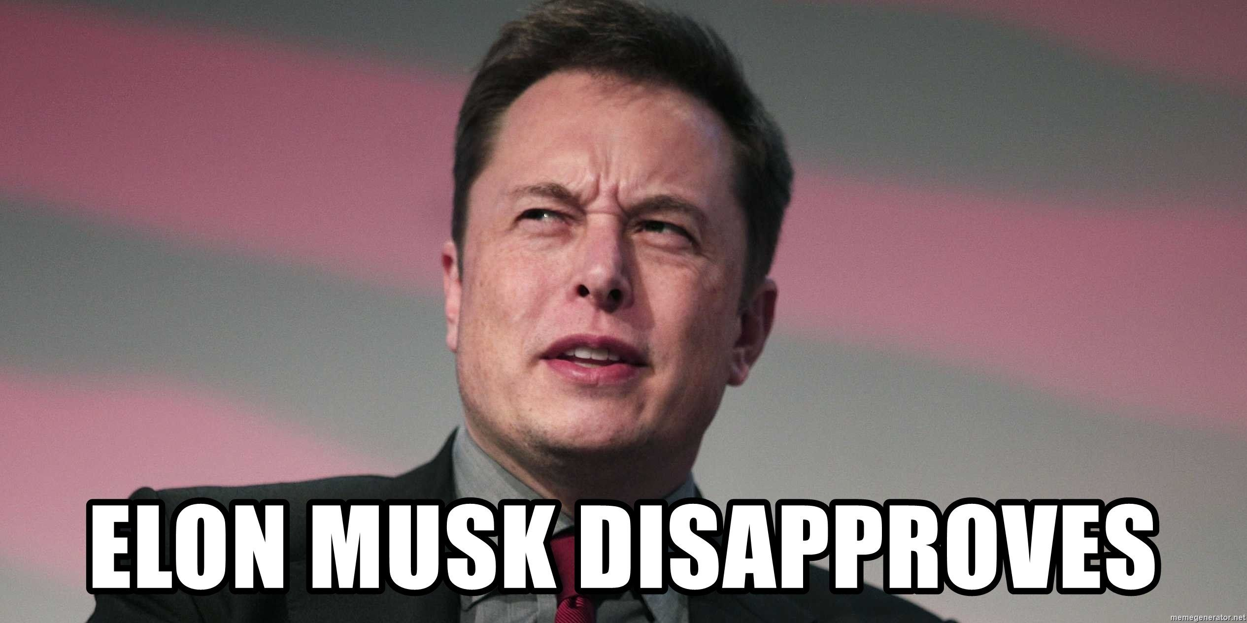 /what-are-crypto-hosted-services-and-why-does-elon-musk-hate-them-24w338g feature image