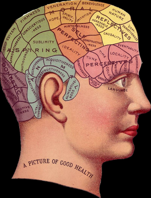 /behavioral-psychology-for-pms-understanding-human-motivations-and-inner-drives-my26321w feature image
