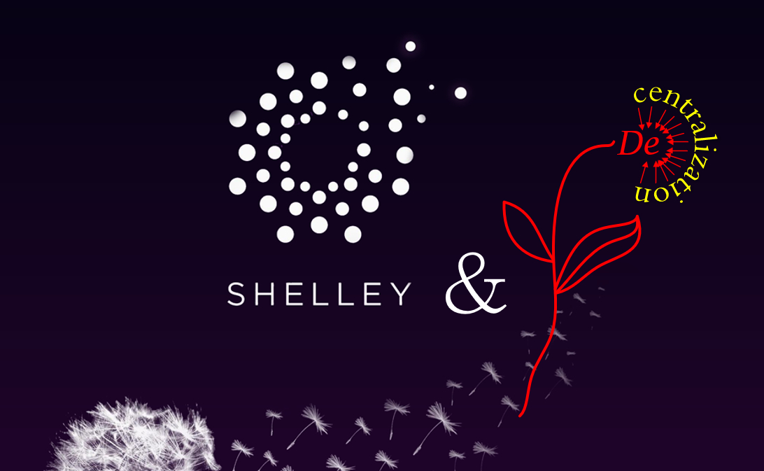 /shelley-or-belly-up-with-new-incentives-iu4j36l4 feature image