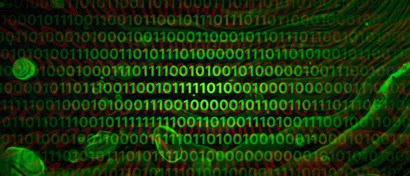 /internet-privacy-under-continued-attack-by-the-us-government-f62p315j feature image