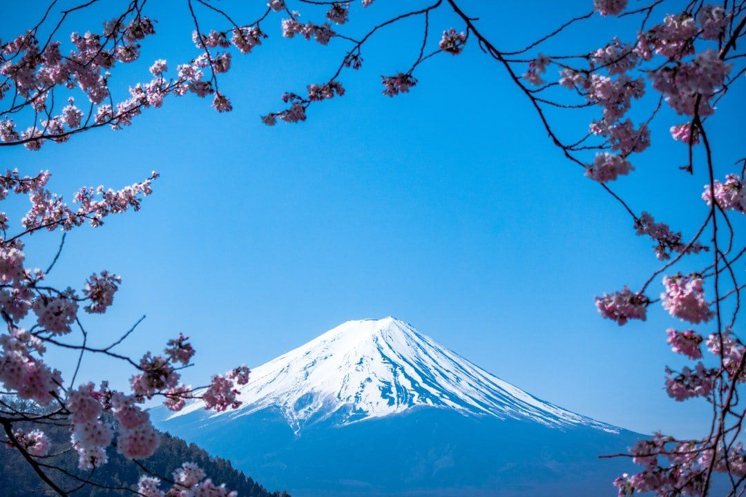 /ask-me-anything-about-japan-fual33h6 feature image