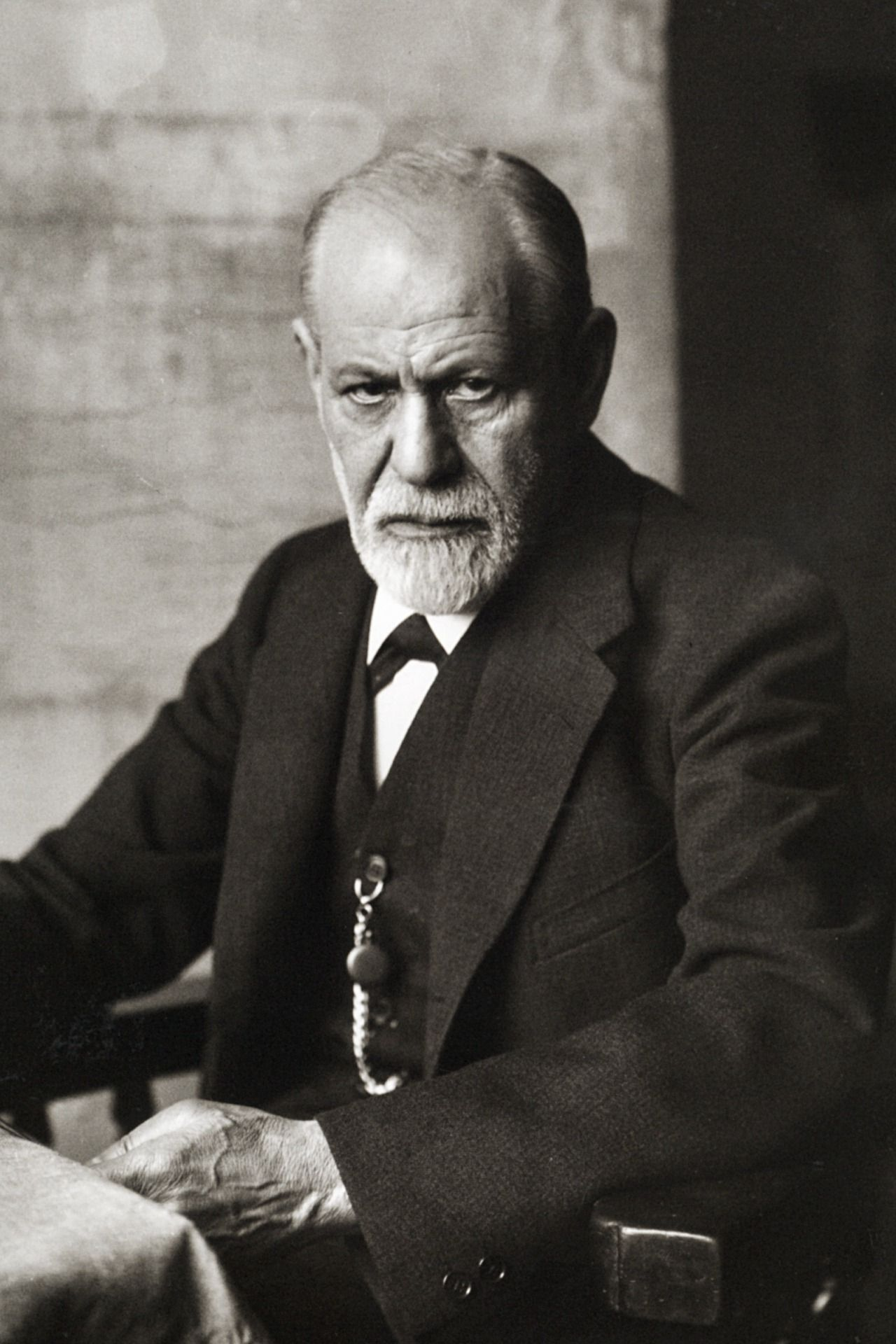 /the-freud-trilogy-in-the-new-remote-work-world-6l19336j feature image